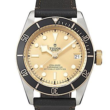 Tudor Black Bay S&G - 79733N