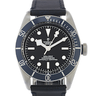 Tudor Black Bay  - 79230B