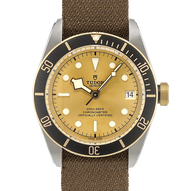 Tudor Black Bay S&G - 79733n
