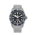 Tudor Black Bay  - 79220B