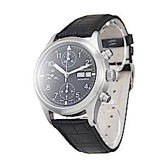 IWC Pilot's Watch  - IW370603