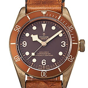 Tudor Black Bay 79250BM